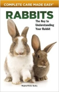 rabbits-complete-care-made-easy