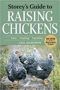 raising-chickens