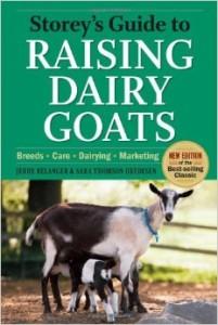 raising-dairy-goats