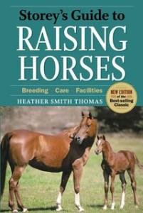 raising-horses