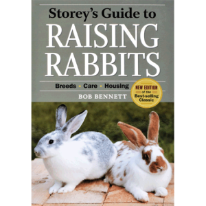 raising-rabbits